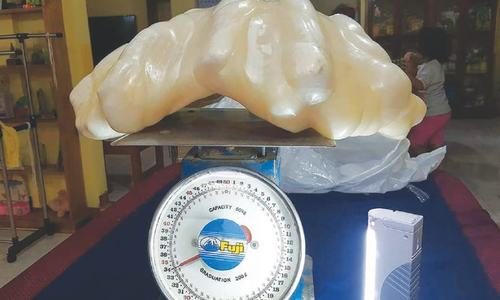 'World's largest' pearl emerges in Philippines