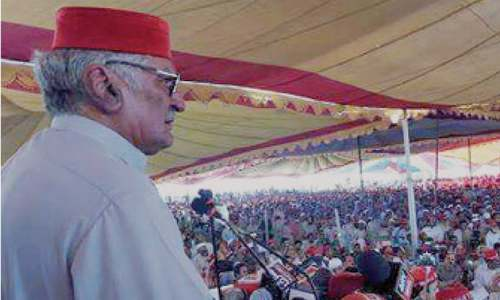 Pakistan's policies failed to bring  desired results: ANP