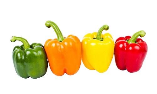 شملہ مرچ کے مختلف رنگوں میں فرق کیا ہے؟