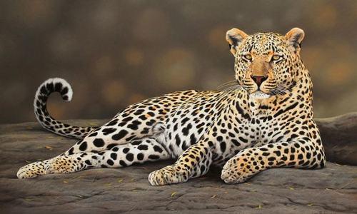 حقیقت سے قریب جنگلی جانوروں کے فن پارے