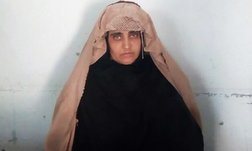 Afghan govt to take up 'Afghan Girl' Sharbat Gula's arrest with Pakistan