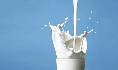 Milk earnings to bring company back to health