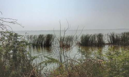 Nature: The case of the disappearing lake