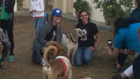 Ayesha Chundrigar Foundation's new animal shelter is now up and running