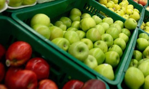 Food, oil imports jump 14pc