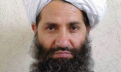 In 'special message', Taliban leader urges Afghans to plant more trees