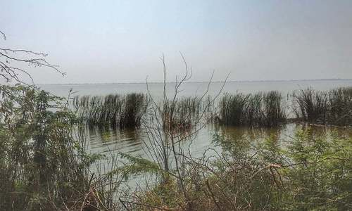 KWSB comes under fire over Haleji Lake project