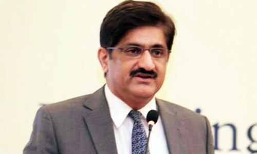 Gas expansion schemes for Punjab 'detrimental to national harmony', complains Murad