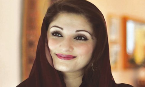 Maryam Nawaz schooled by foreign journalist who exposed Panama Leaks