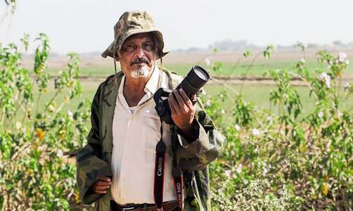 Meet the Pakistani banker who turned to photography to save wildlife
