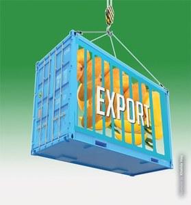 Unlocking mango export potential