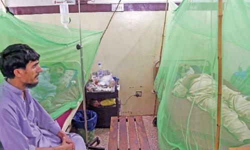 Punjab sends team to Peshawar to help manage dengue outbreak