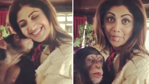 Shilpa Shetty draws ire for videos with exotic animals