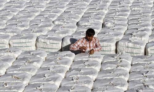 2.36m cotton bales produced