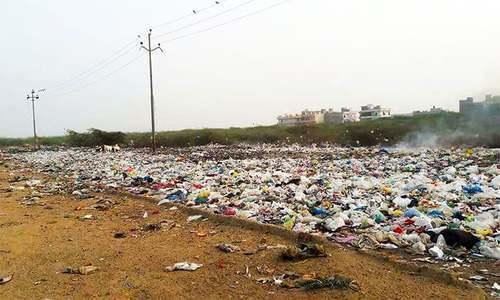 پاکستانی سائنسدانوں نے پلاسٹک کھانے والی فنگس دریافت کرلی