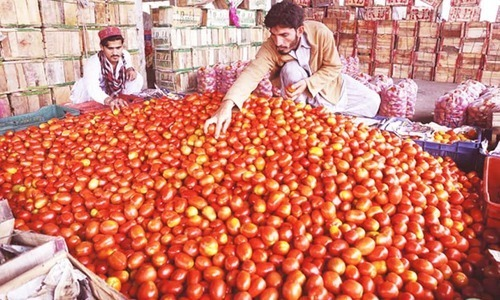 Tomato prices exceed Rs200 in Lahore