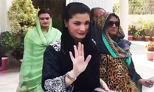 'Not afraid of arrests': Maryam, Capt Safdar granted bail in NAB reference