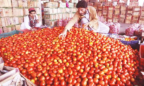 Minister tells Punjab Assembly: 'No tomato import despite mafia's manoeuvring'