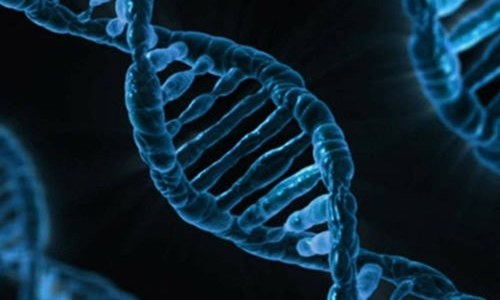 Scientists try first gene editing in the body