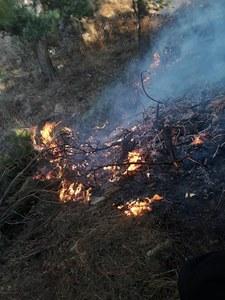 آگ سے 700 ایکڑ اراضی کو نقصان پہنچا