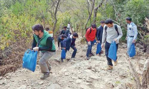University students clean up Trail 5