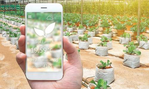 Entrepreneurs will be key players in corporate farming