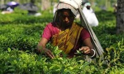 Cleric in Bangladesh arrested for issuing fatwa against women farmers