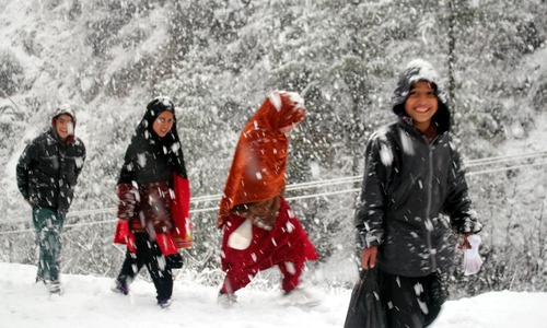 In pictures: People rejoice as snow blankets Shangla valley, Murree
