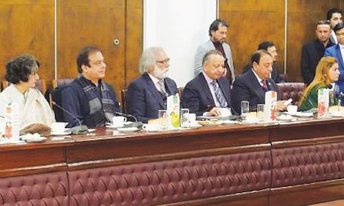 Pakistani, Afghan parliamentarians call for stronger bilateral ties