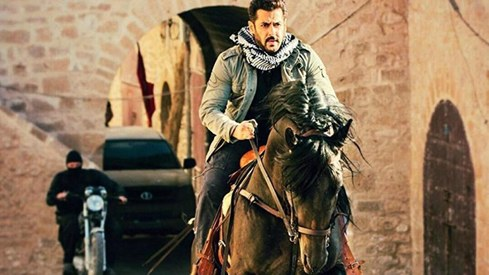 Tiger Zinda Hai screenings in India interrupted by protesters