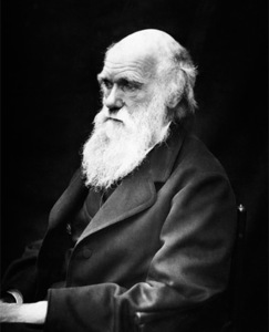 The worst book about Charles Darwin ever written