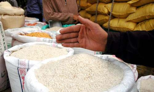 Revised PTA will boost rice exports to Indonesia