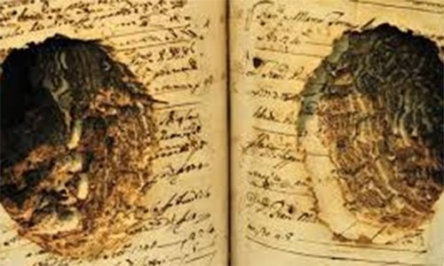 Dead Sea scrolls containing oldest Bible texts deciphered by Israeli university