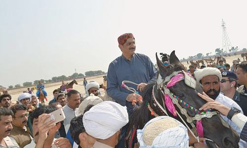 'Sindh Horse and Cattle Show' ends with colourful ceremony