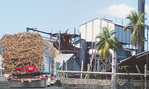 Three rival sugar mills unsealed in south Punjab