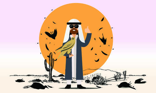 Pakistan: The royal playground for the Arabs