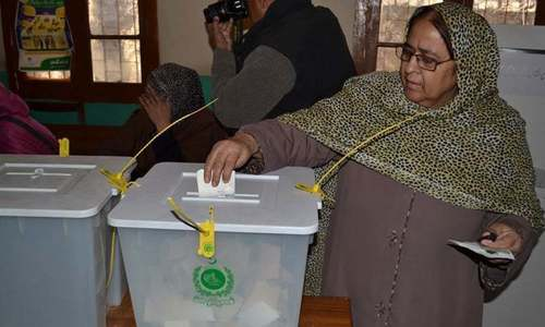Do Pakistanis vote on an ethnic basis?