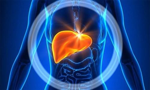جگر کے لیے فائدہ مند اور نقصان دہ غذائیں