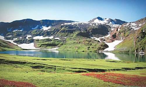 Nature: Spring in Kashmir