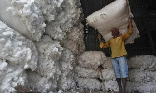 Cotton prices steady on strong demand