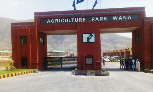 A view of the newly built agricultural park in Wana, South Waziristan. — Photo by Author