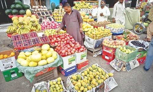 SC urged to ban export of fruits, vegetables