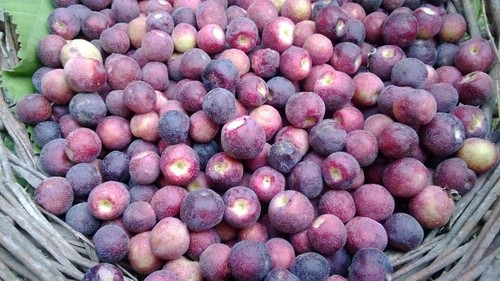 3 ways to make the most of falsa season