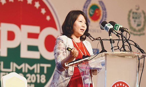 'CPEC is not a gift': Professor Jia Yu at the CPEC 2018 Summit
