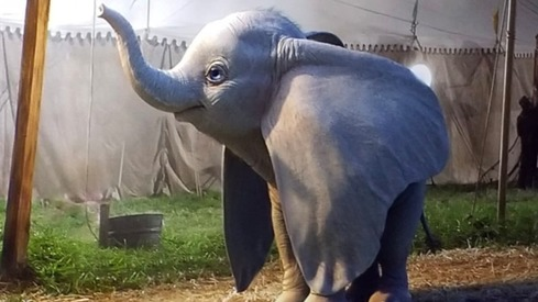 Live action Dumbo gets its first teaser and the nostalgia will hit you like a bus