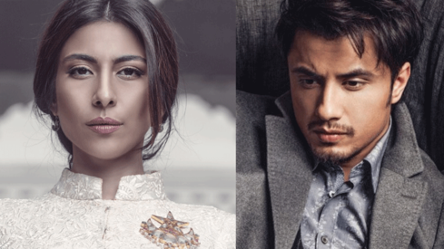 Ali Zafar has filed a Rs100 crore defamation case against Meesha Shafi