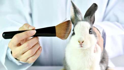 Pakistan joins campaign against animal testing in the beauty industry