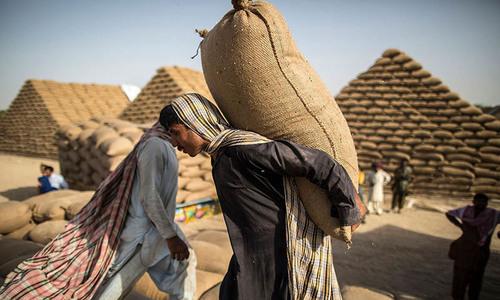 Wheat export target missed