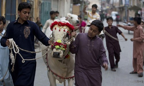 Federal government announces three-day holiday for Eidul Azha