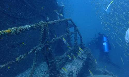 DIVING: THE ELUSIVE WRECK